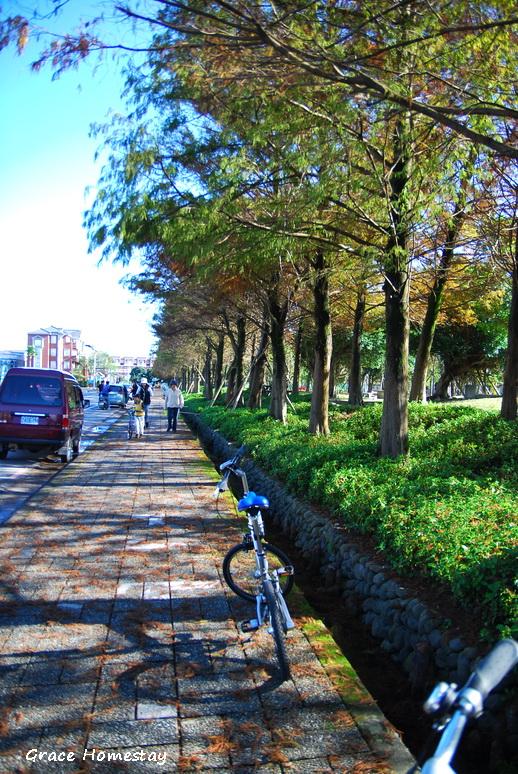 羅東運動公園2010.01~