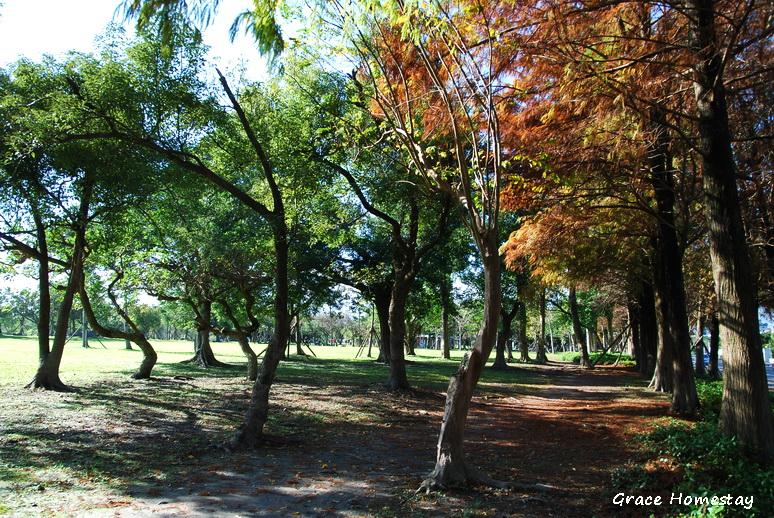 羅東運動公園2010.01