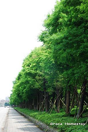 2011.05.06\立夏\羅東運動公園~