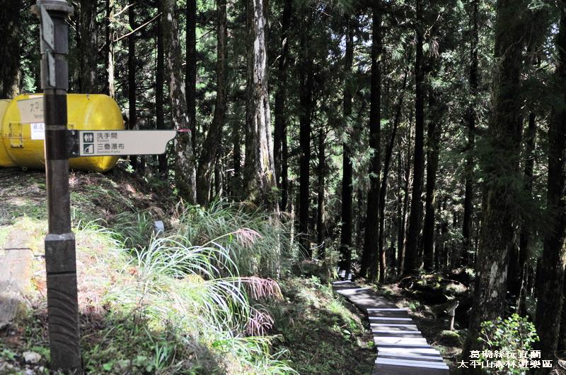 葛瑞絲玩宜蘭~太平山森林遊樂區~