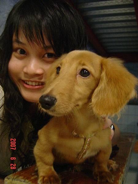 楊博元的狗狗