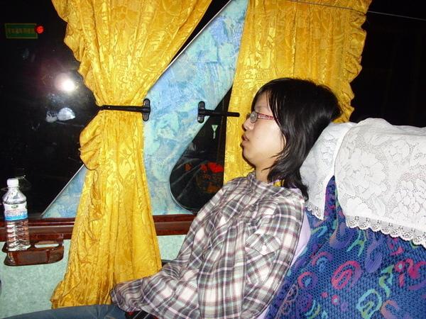 前往澄清湖活動中心的路途,偷拍在睡覺的Sandy