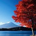 15_Japan