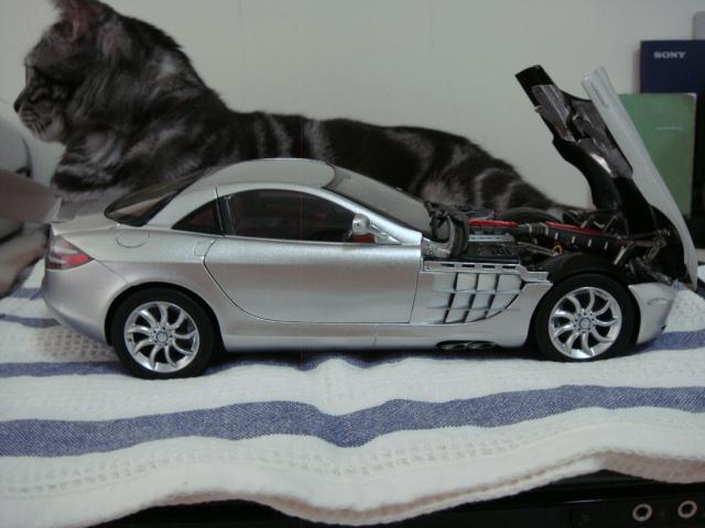 Mercedes-Benz SLR MCLAREN 7