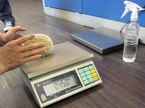 小寶健檢日-體重450g