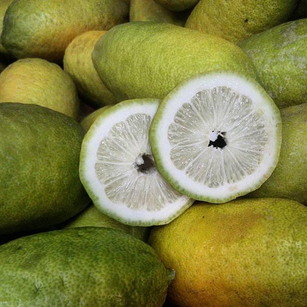 阿公的香水檸檬