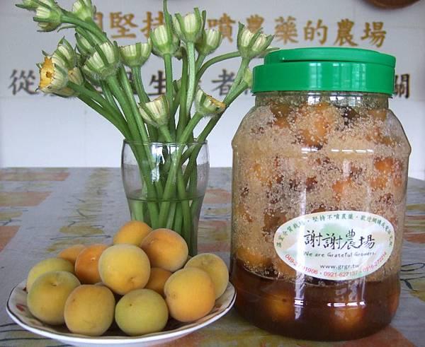 完熟梅與簡易酵素