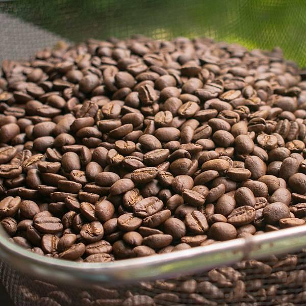 謝謝頂極咖啡豆1.jpg