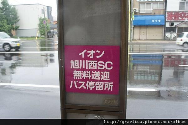 DSC01531.jpg