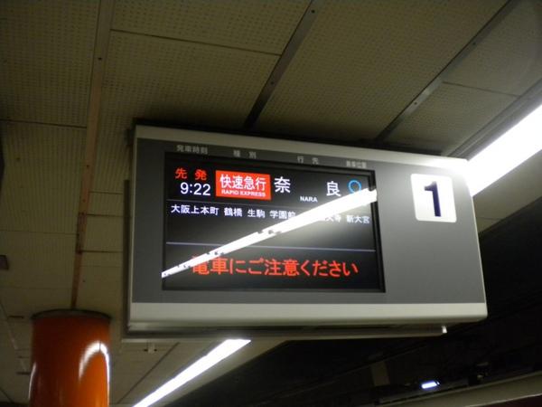 DSCN1232 [800x600].jpg