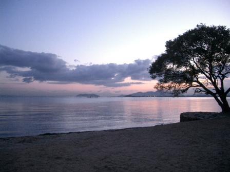 琵琶湖晨光.JPG