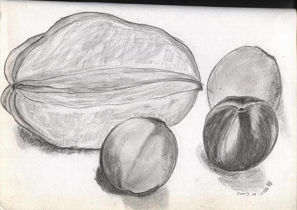 20080725一堆好吃的水果,我覺得楊桃跟前面的桃子畫得還不賴!.jpg