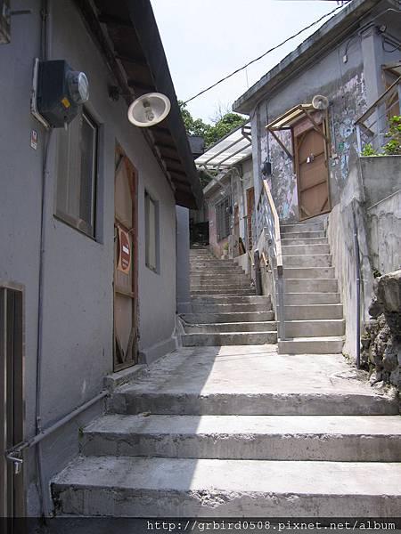 IMG_2004