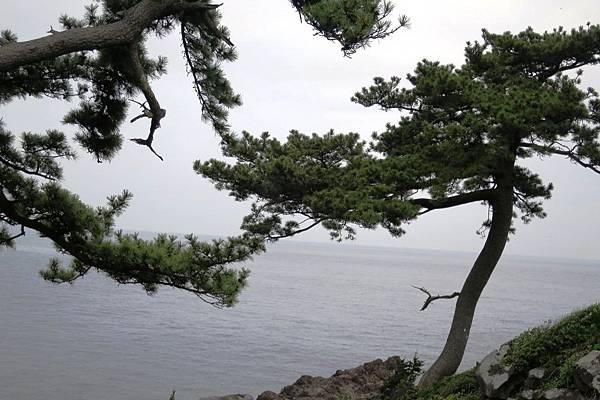 IMG_2049--城崎海岸.JPG
