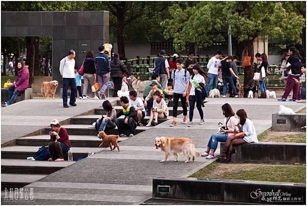 永和四號公園-5DII_9370