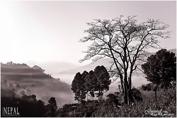 Nepal-2011-0033C
