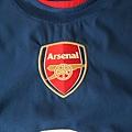 Arsenal 200910客場--隊徽
