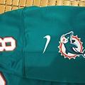Matt Moore Miami Dolphins 201213 Home--肩膀.JPG