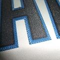 多倫多藍鳥 2006 Home - 電繡1