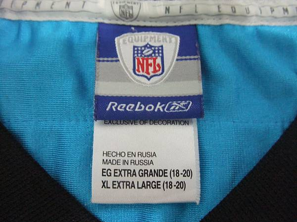 Carolina Panthers 200211 Alternate--衣領.JPG