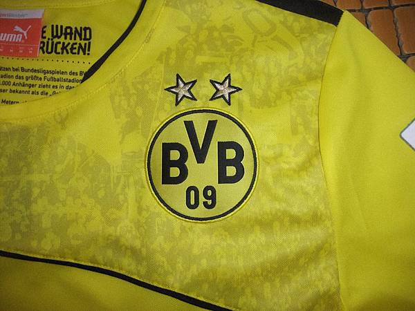 BVB 2013-14 Winter Special--隊徽.JPG
