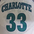 夏洛特黃蜂1992-95 Replica (H)--胸前.JPG