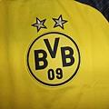 BVB 201617 Ambassador Home--隊徽.JPG