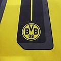 BVB 201617 Ambassador Home--印字1.JPG