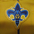 New Orleans Hornets 201011 Alternate - 隊徽.JPG