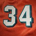 邁阿密海豚200211 Alternate Replica--肩膀.JPG