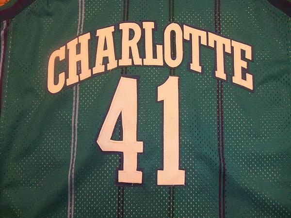 Charlotte Hornets 199799 (青)--胸前.JPG