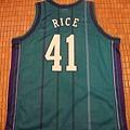 Charlotte Hornets 199799 (青)--背面.JPG