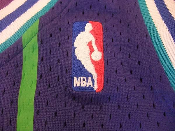 夏洛特黃蜂199495 MN復古--NBA.JPG
