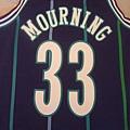 夏洛特黃蜂199495 MN復古--33 Alonzo Mourning.JPG
