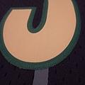 夏洛特黃蜂199495 MN復古--電繡3.JPG
