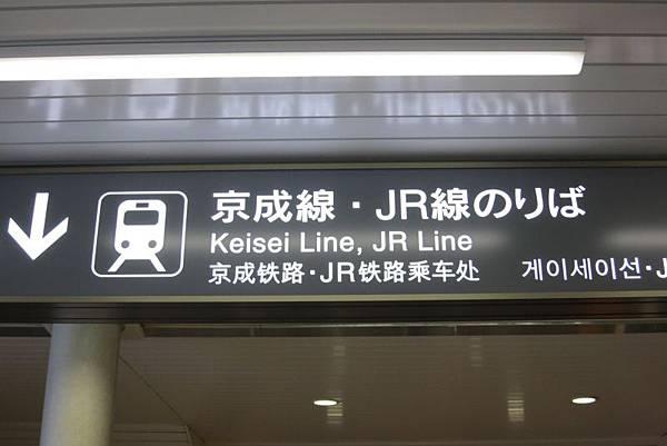 IMG_4551.JPG
