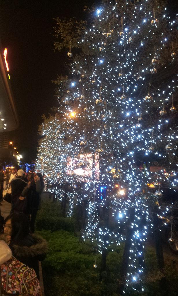 2011-12-25 20.29.11.jpg