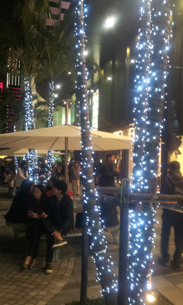 2011-12-25 20.38.12.jpg