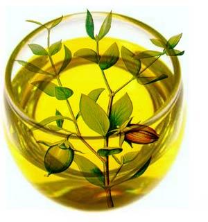 jojoba-oil-benefits-荷荷芭油-綠果手工皂