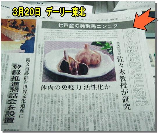 日新聞 - 2.jpg