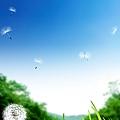 40Q58PICgAw_1024.jpg