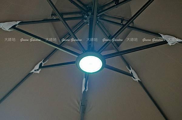 parasol_06