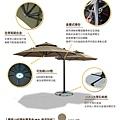 parasol_D5.jpg