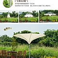 parasol_D6_2.jpg