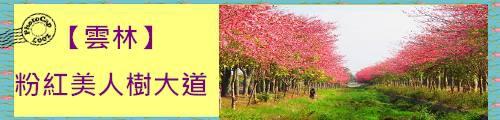 粉紅美人樹大道.jpg