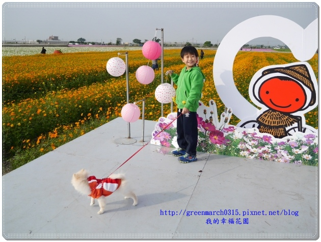 P9000415 (620x465).jpg
