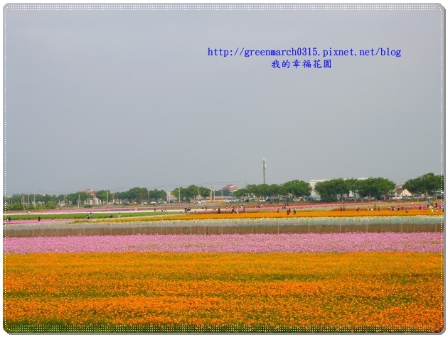 P9000442 (620x465).jpg