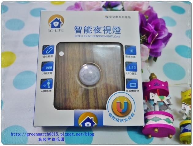 P9080065 (620x465).jpg