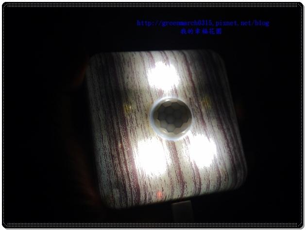 P9080083 (620x465).jpg