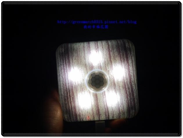 P9080084 (620x465).jpg